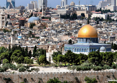 freunde-israels-e-0166