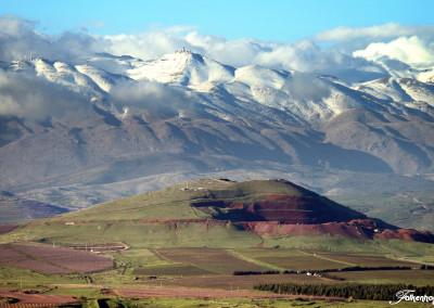 Der Golan