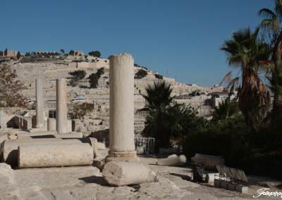 freunde-israels-e-4136