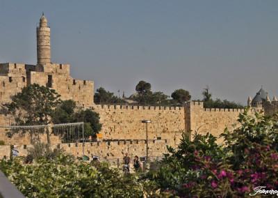 freunde-israels-e-6612