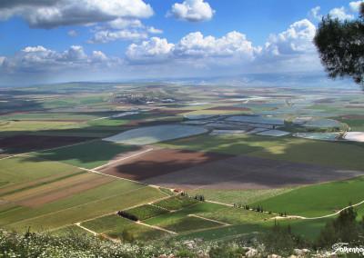 freunde-israels-galilaea-e-2184