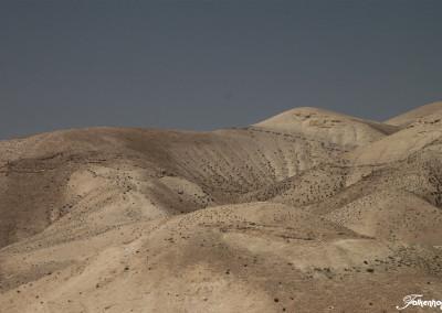 freunde-israels-wueste-e-6381